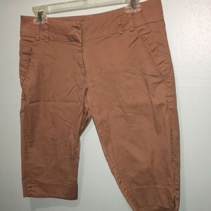 Brown Limited Capris pants Cassidy Fit